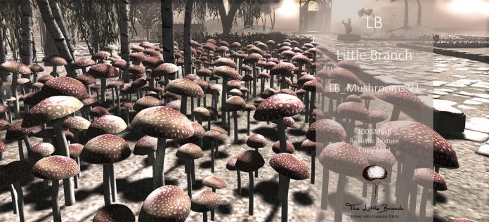 lb-mushroom