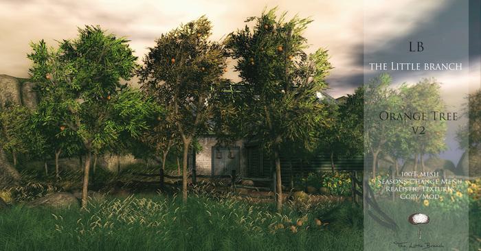 lb_orangetree_v2_4seasons