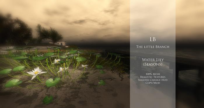 lbwaterlilyseasons