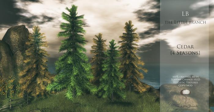 little_branch_cedar_4seasons