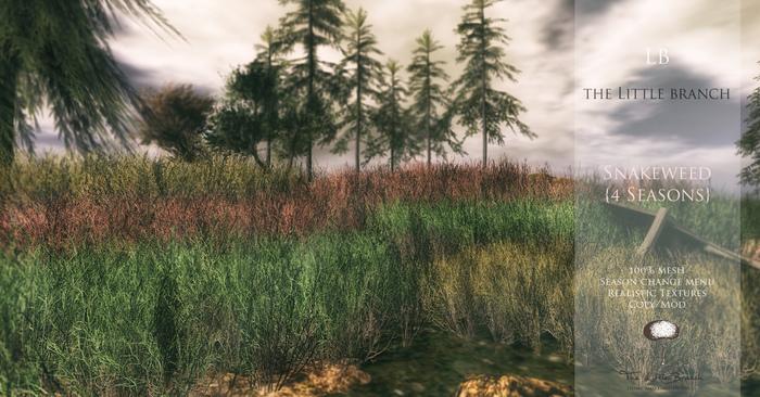 little_branch_snakeweed_4seasons